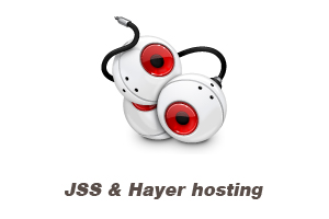 JSS & Hayer hosting - domain temp page